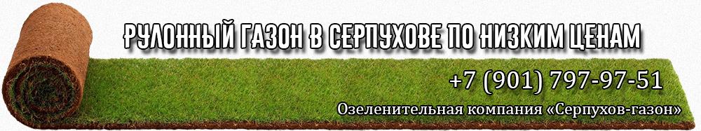 Рулонный газон в Серпухове